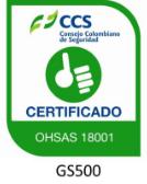 OHSAS 18001, Trienergy petroleo e industria